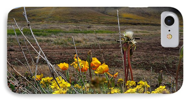 Poppies In The Field Chiracahua Mountains IPhone Case by Diane Lent