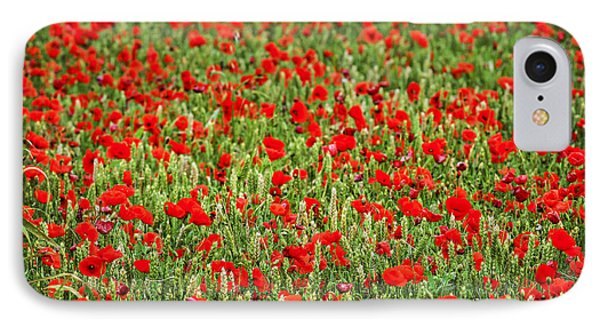 Poppies In Wheat IPhone Case by Elena Elisseeva