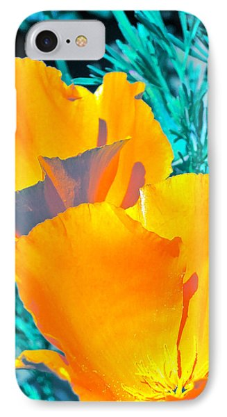 IPhone Case featuring the photograph Poppy 4 by Pamela Cooper