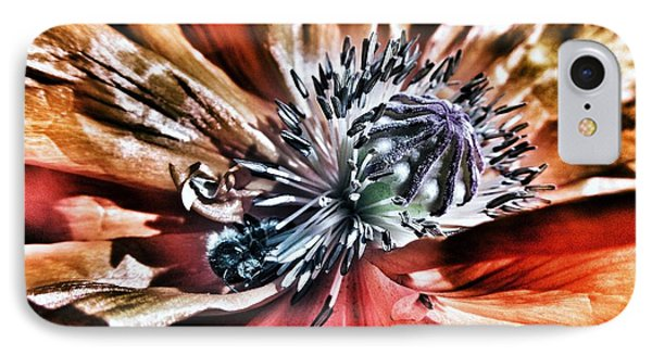 Poppy And The Bee IPhone Case by Marianna Mills