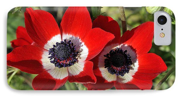 IPhone Case featuring the photograph Poppy Anemones by George Atsametakis