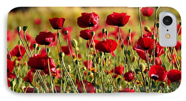 IPhone Case featuring the photograph Poppy Fields Forever by Uri Baruch