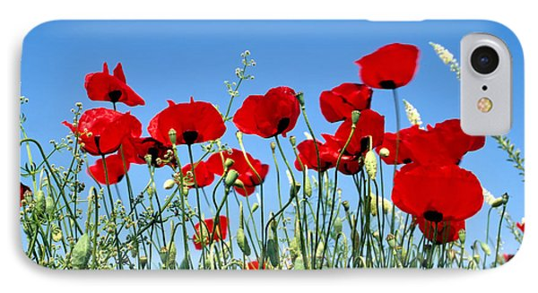 IPhone Case featuring the photograph Poppy Flowers by George Atsametakis