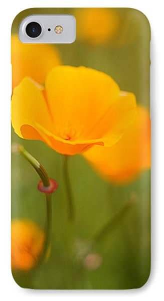 IPhone Case featuring the photograph Poppy II by Ronda Kimbrow