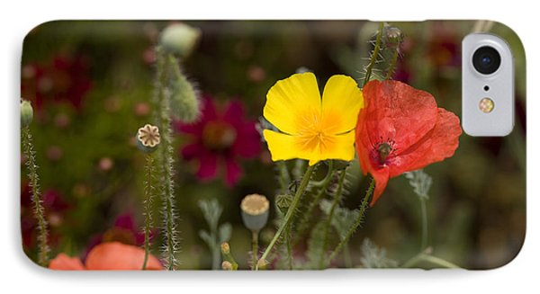 Poppy Love IPhone Case by Mark Greenberg