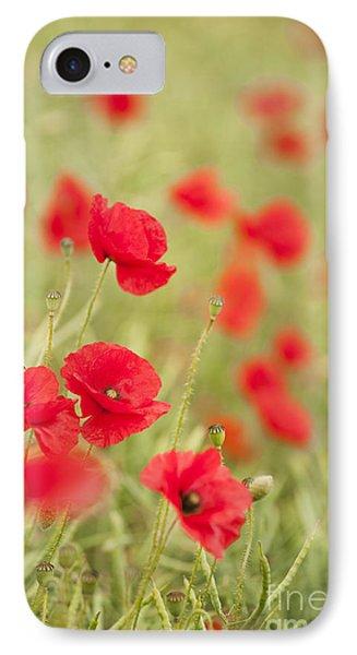 Poppy Red Phone Case by Anne Gilbert