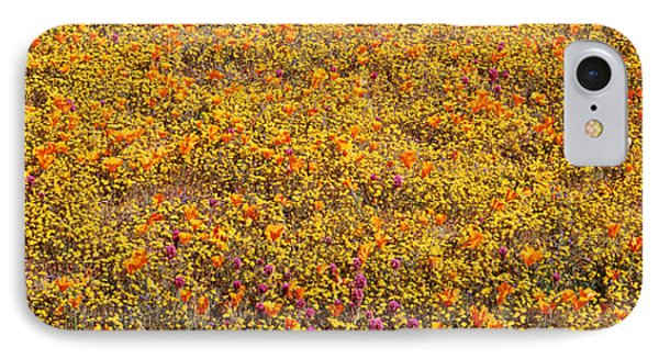 Poppy Reserve Mojave Desert Ca Usa IPhone Case by Panoramic Images