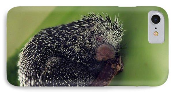 Porcupine Slumber Phone Case by Melanie Lankford Photography
