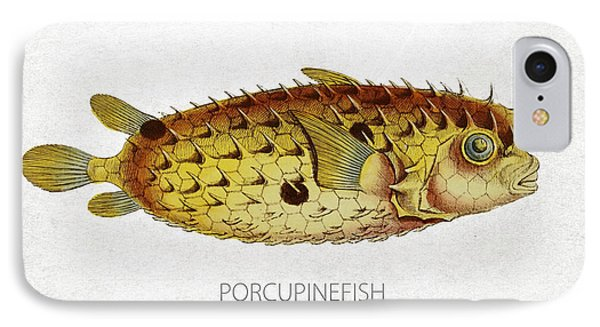 Porcupinefish IPhone Case by Aged Pixel
