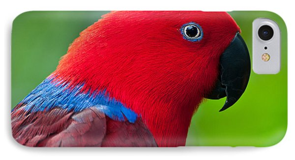 IPhone Case featuring the photograph Portrait II by Sabine Edrissi