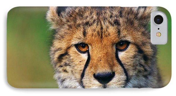 IPhone Case featuring the photograph Portrait Of A Cheetah Cub by Nick  Biemans