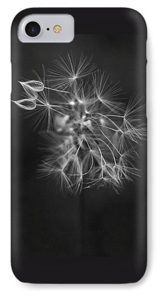 Portrait Of A Dandelion IPhone Case by Rona Black