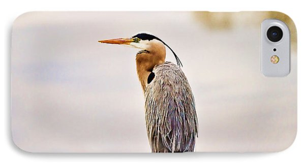 Portrait Of A Great Blue Heron Phone Case by Scott Pellegrin