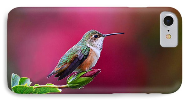 Portrait Of A Hummer Phone Case by Lynn Bauer