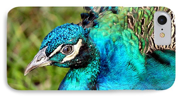 IPhone Case featuring the photograph Portrait Of A Peacock by Kathy  White