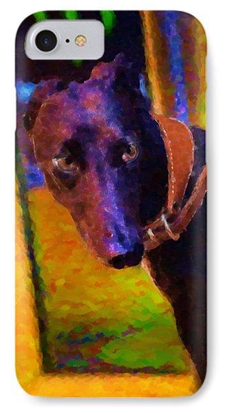 Portrait Of A Portuguese Dog 2 IPhone Case