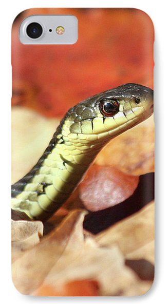 IPhone Case featuring the photograph Portrait Of A Snake by Doris Potter