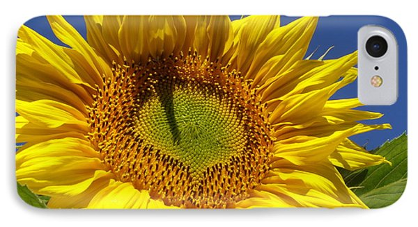Portrait Of A Sunflower IPhone Case by Diane Miller