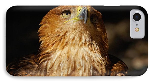 IPhone Case featuring the photograph Portrait Of An Eastern Imperial Eagle by Nick  Biemans