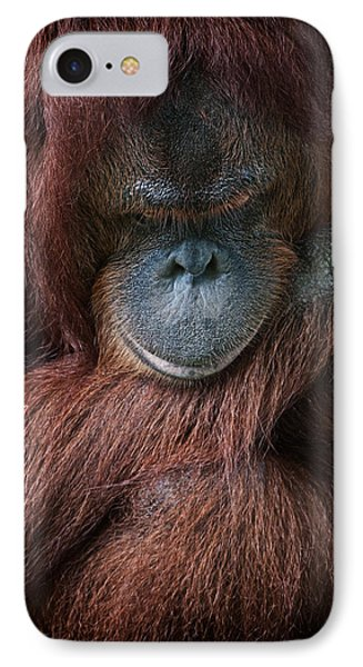 IPhone Case featuring the photograph Portrait Of An Orangutan by Zoe Ferrie