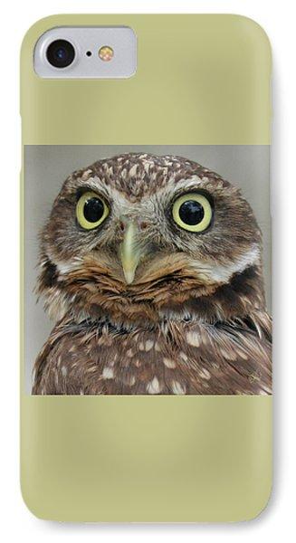 Portrait Of Burrowing Owl IPhone Case by Ben and Raisa Gertsberg