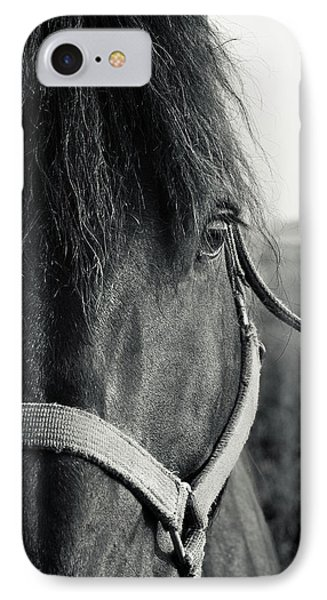 Portrait Of Horse In Black And White IPhone Case by Peter v Quenter