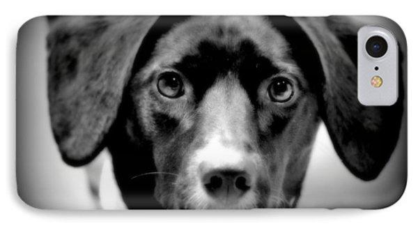 Portrait Of Man's Best Friend II IPhone Case by Aurelio Zucco