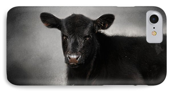 Portrait Of The Black Angus Calf IPhone Case