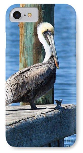 Pelican iPhone 7 Case - Posing Pelican by Carol Groenen