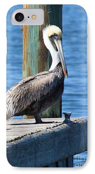 Posing Pelican Phone Case by Carol Groenen