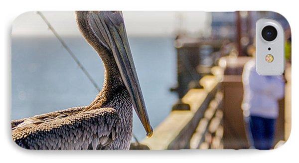 Posing Pelican IPhone Case by Robert  Aycock