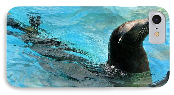 IPhone Case featuring the photograph Posing Sea Lion by Kristine Merc