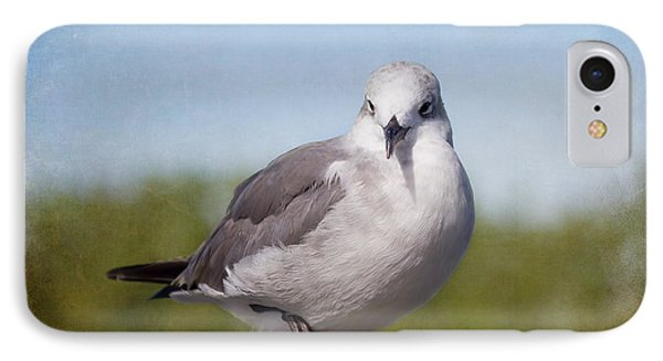 Posing Seagull Phone Case by Kim Hojnacki
