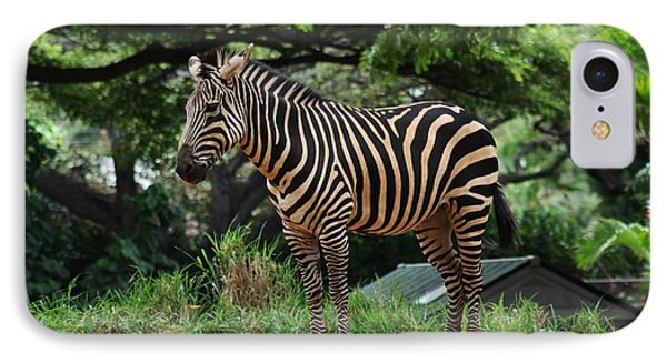 IPhone Case featuring the photograph Posing Zebra by Craig Wood