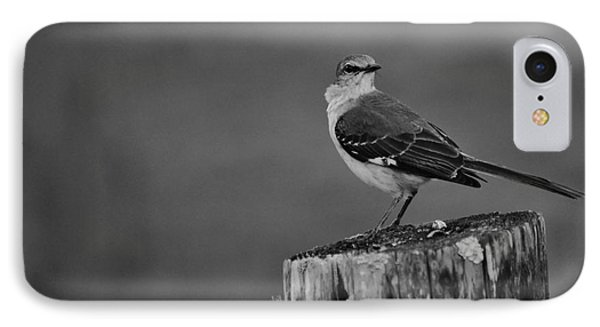 IPhone Case featuring the photograph Post Perch by Lynda Dawson-Youngclaus