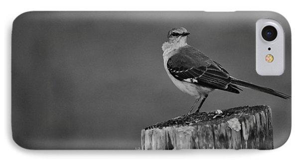 Post Perch IPhone Case by Lynda Dawson-Youngclaus