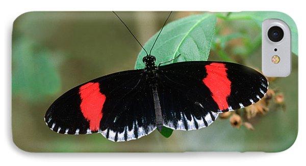 Postman Butterfly IPhone Case by Nigel Downer
