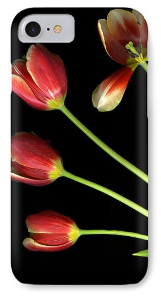 Pot Of Tulips IPhone Case by Christian Slanec