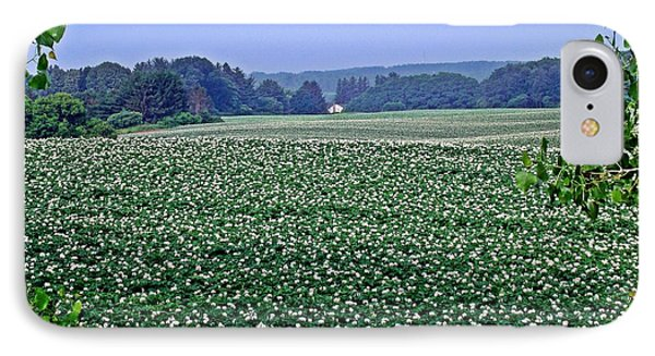 Potato Blossoms By The Acre IPhone Case