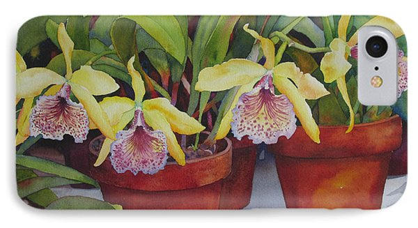 Potted Orchids IPhone Case by Judy Mercer