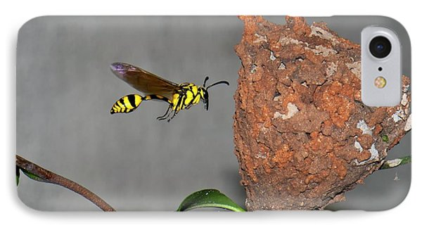 Potter Wasp With Nest IPhone Case