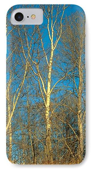 Prairie Autumn 9 Phone Case by Terry Reynoldson