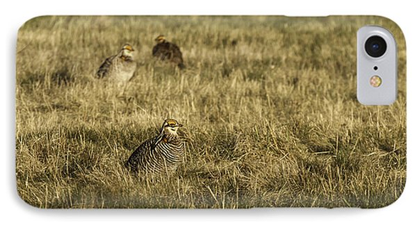 Prairie Chickens After The Boom Phone Case by Thomas Young