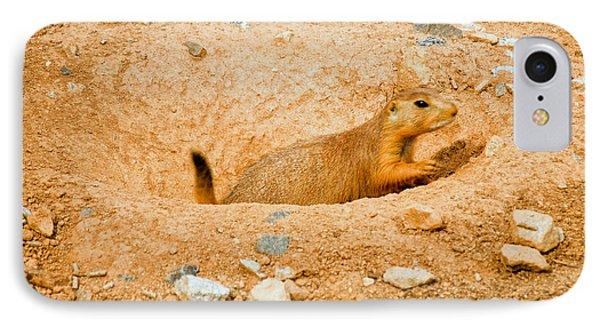 Prairie Dog Digs IPhone Case