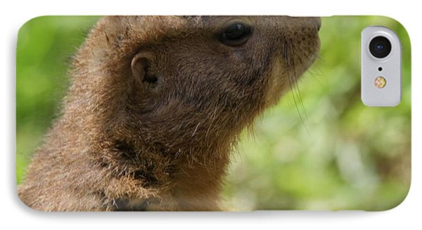 Prairie Dog Portrait IPhone 7 Case