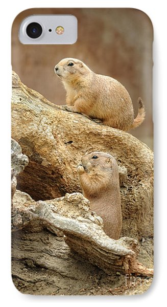 Prairie Dogs IPhone Case