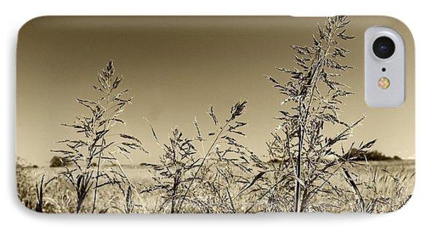 IPhone Case featuring the photograph Prairie Grass by Ellen O'Reilly