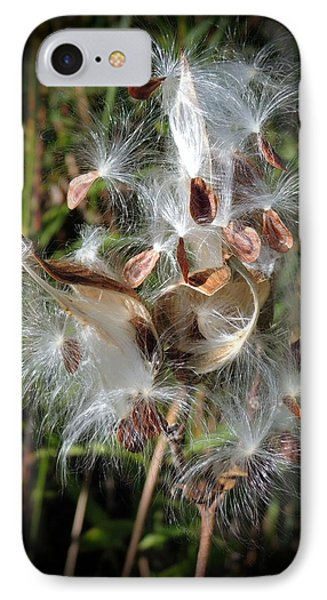 Prairie Milkweed IPhone Case