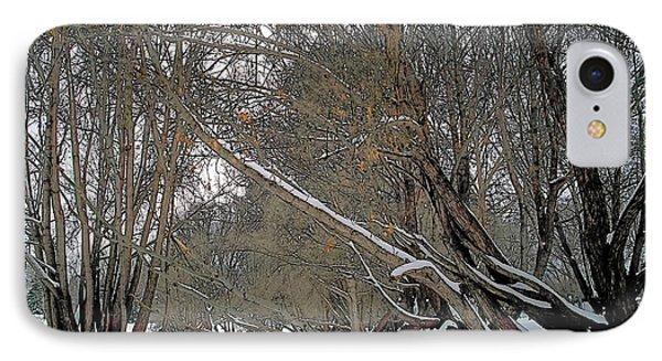 Prairie Winter 2 Phone Case by Terry Reynoldson