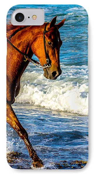 Prancing In The Sea IPhone Case by Shannon Harrington
